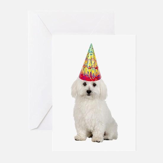 Bichon Frise Birthday Cards (Pk of 20)