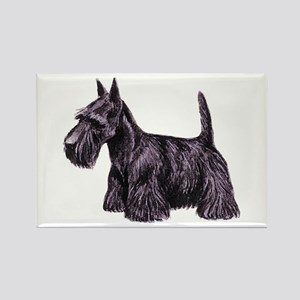 Scottish Terrier Rectangle Magnet