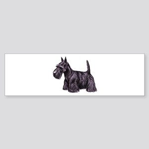 Scottish Terrier Sticker (Bumper)