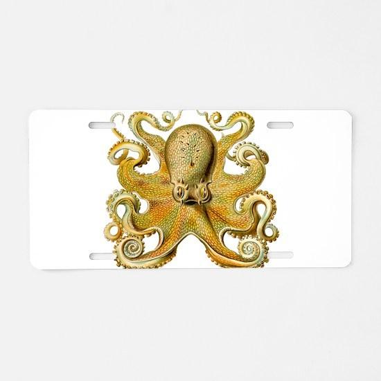 Vintage octopus cephalopod Aluminum License Plate