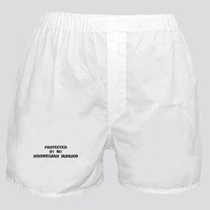 Protected by Norwegian Buhund Boxer Shorts