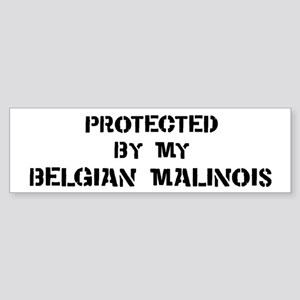 Protected by Belgian Malinois Bumper Sticker