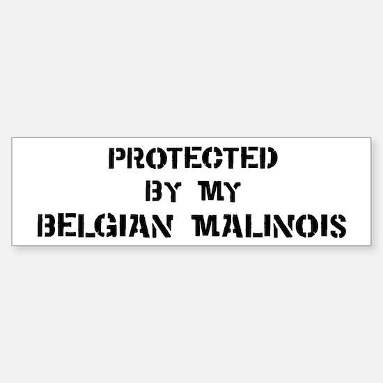 Protected by Belgian Malinois Bumper Bumper Bumper Sticker
