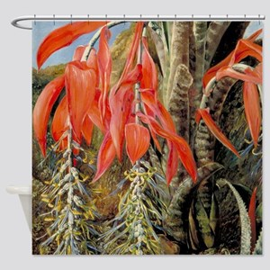 A Brazilian Epiphyte or Air Plant Shower Curtain