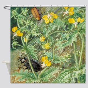 A Chilean Stinging Nettle and Male Shower Curtain