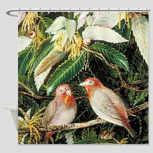 A Himalayan Oak and Birds Shower Curtain