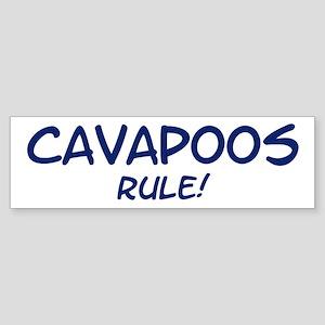 Cavapoos Rule Bumper Sticker