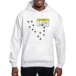 BULLET HOLE Hooded Sweatshirt