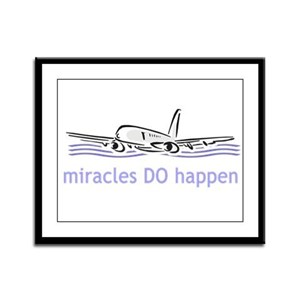 Miracle Plane Framed Panel Print