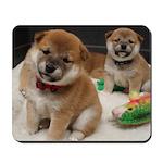 Puppy Cam Mousepad
