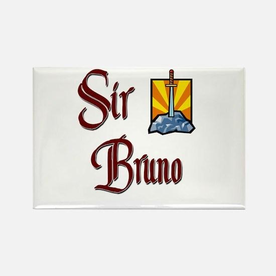 Sir Bruno Rectangle Magnet