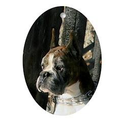 Brindle Boxer Dog Oval Ornament