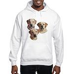 The Boys Hooded Sweatshirt