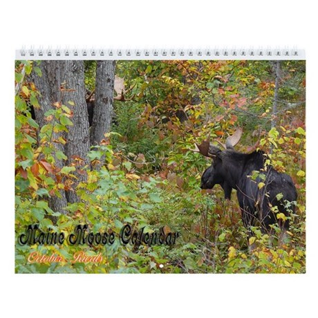 Maine Moose Wall Calendar 2