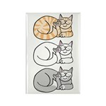 3 ASL Kitties Rectangle Magnet