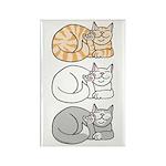 3 ASL Kitties Rectangle Magnet (10 pack)