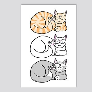 3 ASL Kitties Postcards (Package of 8)