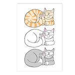 3 ASL Kitties Postcards (Package of 8)