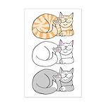 3 ASL Kitties Mini Poster Print