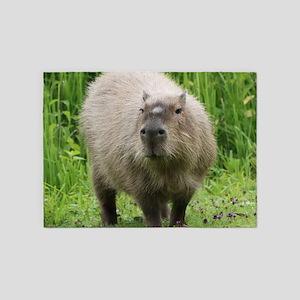 Adorable capybara 5'x7'Area Rug