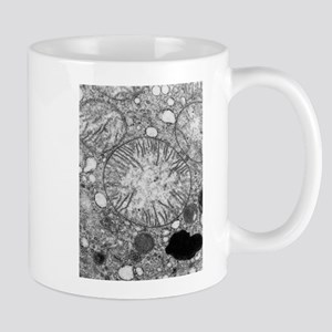 Mitochondria in cross s Stainless Steel Travel Mug