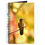 Hummingbird Bird Watching Journal