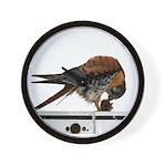 American Kestrel Bird Watching Wall Clock