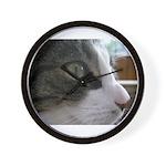 Sylvester in focus Wall Clock