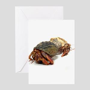 Wandering Hermit Crabs Greeting Card