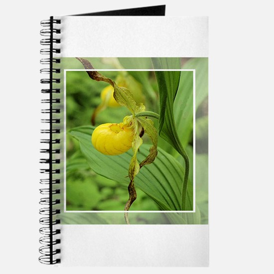 Yellow Ladyslipper Journal