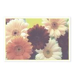 Summer Morning Postcards (Package of 8)