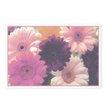 Pretty in Pink Daisy Postcards (Package of 8)