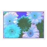 Blue Moon Daisy Postcards (Package of 8)
