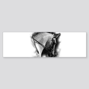 Dressage horse Bumper Sticker