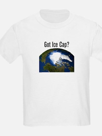 Got Ice Cap? T-Shirt