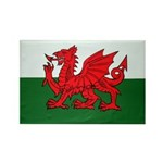 Wales Flag Rectangle Magnet (10 pack)