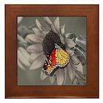 Butterfly On A Sunflower Framed Tile