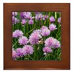 Framed Tile - Purple Clover