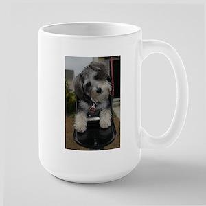 DSC_3808 Mugs