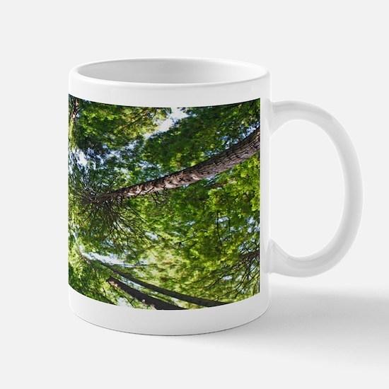 The Redwood Canpoy Mug