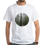 Redwood Forest Fog White T-Shirt