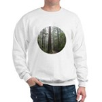 Redwood Forest Fog Sweatshirt