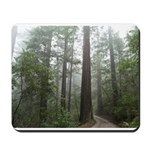 Redwood Forest Fog Mousepad