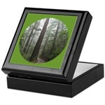 Redwood Forest Fog Keepsake Box
