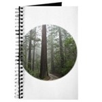 Redwood Forest Fog Journal