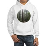 Redwood Forest Fog Hooded Sweatshirt