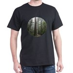 Redwood Forest Fog Dark T-Shirt