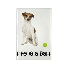 Jack Russell Terrier Life Rectangle Magnet