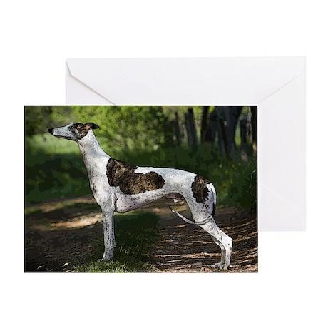 Greyhound Art Greeting Card