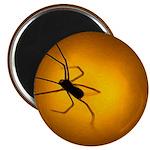 Spider 2.25